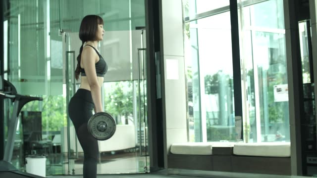 woman weight lifting in gym - weight training stock videos & royalty-free footage