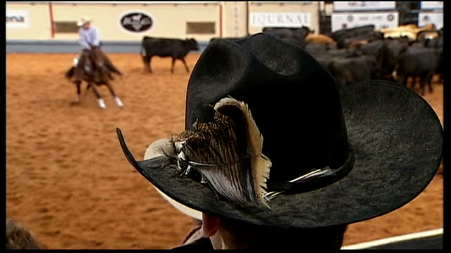 woman whooping cowboy hat worn by man in crowd men in stetson hats watching show - cowboy hat stock videos & royalty-free footage