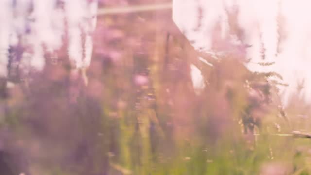 vidéos et rushes de femme de sp avec un bouquet marchant par un domaine - bouquet de fleurs