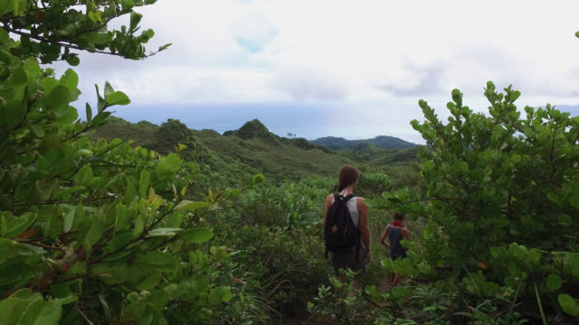 woman with a child hiking on path through the tropical forest, back view - tropical rainforest stock videos & royalty-free footage