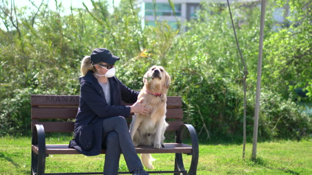 woman with a face mask sitting her dog in park bench - park bench stock videos & royalty-free footage
