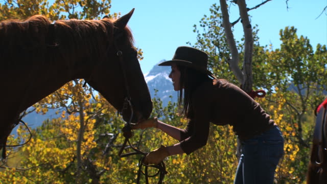 woman with a horse - see other clips from this shoot 1139 stock videos & royalty-free footage