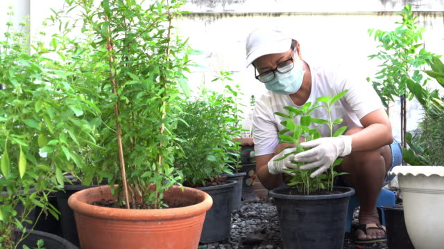 woman with a protective mask while working in her garden. illness prevention from corona virus. - illness prevention stock videos & royalty-free footage