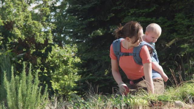 vídeos de stock e filmes b-roll de ms woman with baby planting on green roof / seattle, washington, usa - terreno