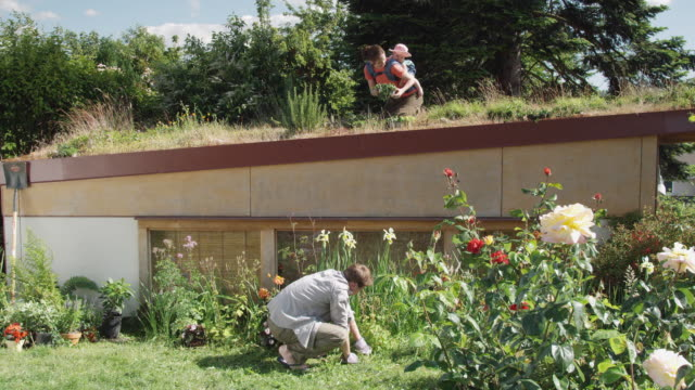 ws woman with baby planting on green roof while man plants flowers in garden below / seattle, washington, usa - standbildaufnahme stock-videos und b-roll-filmmaterial