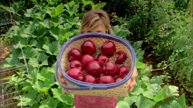 woman with basket of apples - see other clips from this shoot 1425 stock videos and b-roll footage