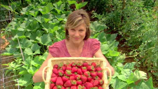 woman with basket of strawberries - see other clips from this shoot 1425 stock videos and b-roll footage
