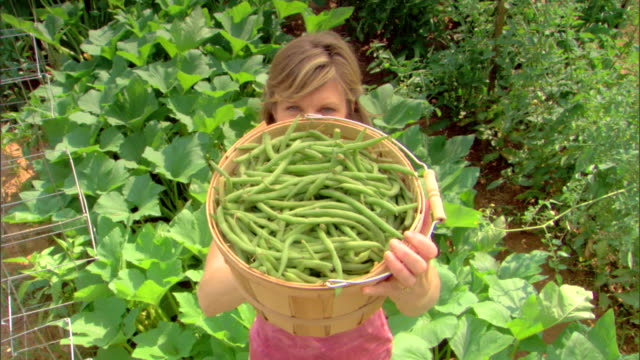 woman with basket of string beans - see other clips from this shoot 1425 stock videos and b-roll footage