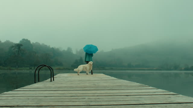 Woman with blue umbrella and dog walking on pier at lake