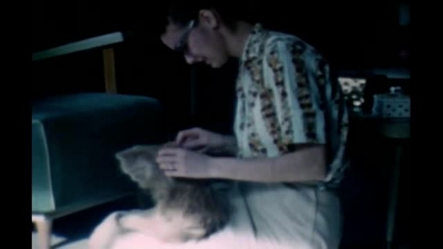1965 woman with cat - short sleeved stock videos & royalty-free footage