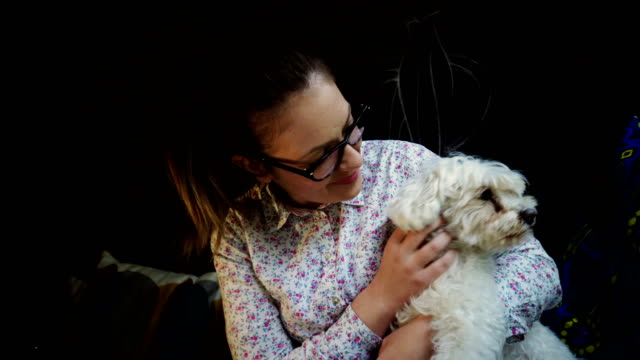 woman with dog at cafe - maltese dog stock videos and b-roll footage