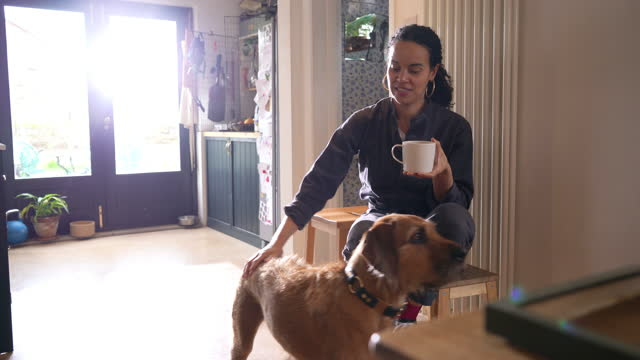 woman with dog drinking tea in kitchen - domestic animals stock videos & royalty-free footage