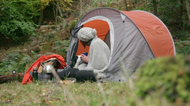 stockvideo's en b-roll-footage met woman with dog in tent - alleen één mid volwassen vrouw