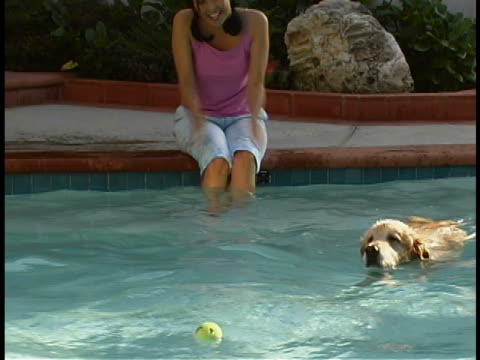 woman with dog - freibad stock-videos und b-roll-filmmaterial