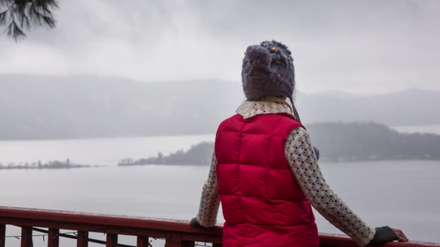 woman with fashionable red vest is looking out over misty panoramic winter landscape - vest stock videos and b-roll footage
