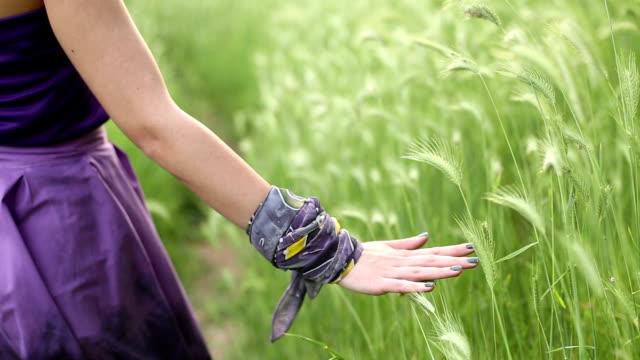 女性手で簡単に - 草原点の映像素材/bロール