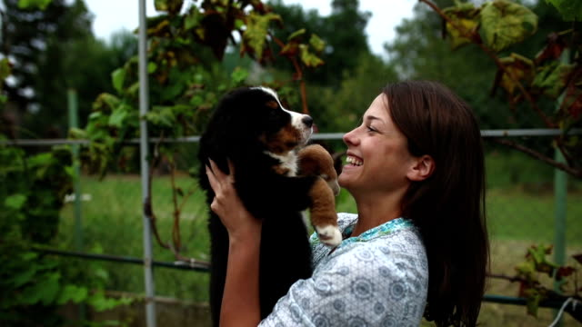 woman with her lovely puppy - adoption stock videos and b-roll footage