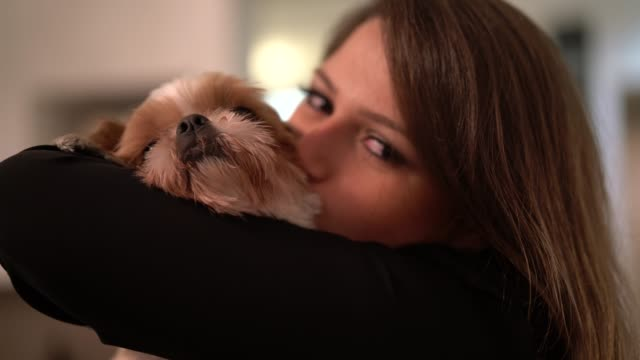 woman with her shih tzu dog - portare video stock e b–roll