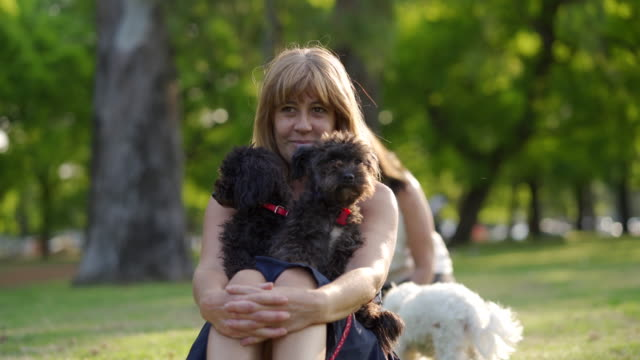 woman with her two dog - pet owner stock videos & royalty-free footage
