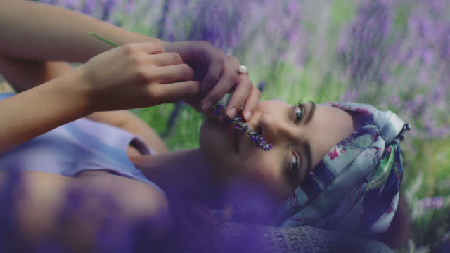 woman with lavender flowers relaxing on field - colours stock videos & royalty-free footage