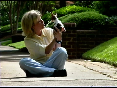 woman with playful chihuahua - one mid adult woman only stock videos & royalty-free footage