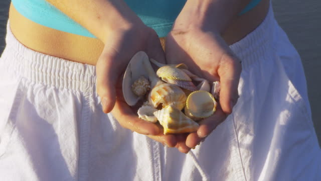 woman with seashells - seashell stock videos & royalty-free footage