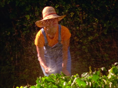 stockvideo's en b-roll-footage met woman with straw hat + overalls watering garden with hose / france - strohoed
