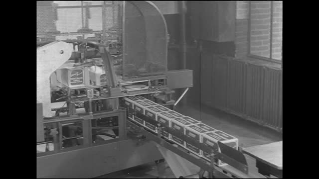 woman worker loading boxes of crackers onto conveyor belt boxes moving into automated wrapping machine ms mechanized folding of paper ends boxes out... - cracker stock videos and b-roll footage