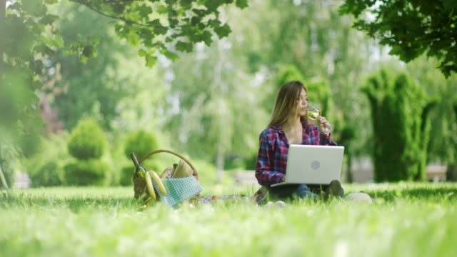 woman working on laptop and drinking white wine on picnic at the nature - picnic stock videos and b-roll footage