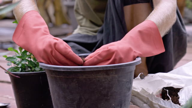 womans arms wearing pink washing up gloves preparing soil in plant pot - one mid adult woman only stock videos & royalty-free footage