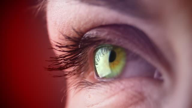 macro di occhio donna