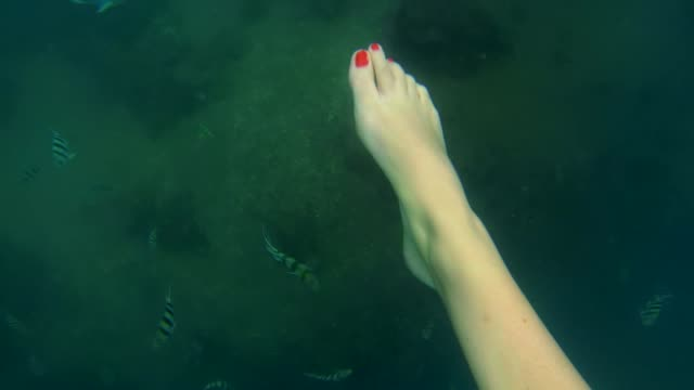 woman's feet kicking underwater in ocean with fish below - red nail polish stock videos and b-roll footage
