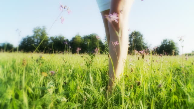 stockvideo's en b-roll-footage met hd: woman's feet walking in grass - blootvoets
