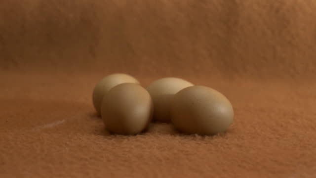 woman's hand arrange some eggs on a brown background - brown background stock videos & royalty-free footage