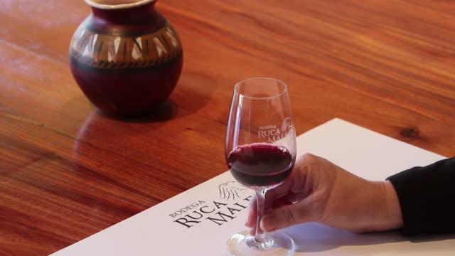 vídeos de stock, filmes e b-roll de woman'™s hand swirls red wine at ruca malen winery - redemoinho