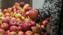Woman's hand take apple in marketplace. African American woman shopping apples