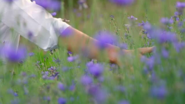 SLO MO Woman's hand touching cornflowers