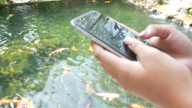 Woman's hand using smart phone in terrace