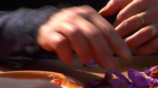 CU Woman's hands selecting saffron threads, Consuegra, Spain