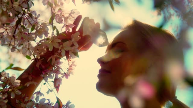vídeos de stock e filmes b-roll de woman's head with a healing crystal against falling petals of cherry blossom tree - ametista