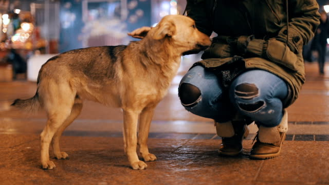Mujeres y un perro