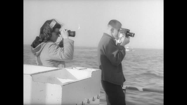 vídeos de stock e filmes b-roll de women and children in line to get on boat / sign reading 'whale hunt' on shore / passengers looking over the sides at whales in water / various views... - organismo aquático