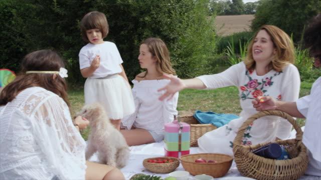women and girls at picnic - ウィルトシャー州点の映像素材/bロール