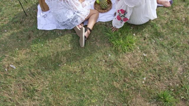 women and girls having picnic - ウィルトシャー州点の映像素材/bロール