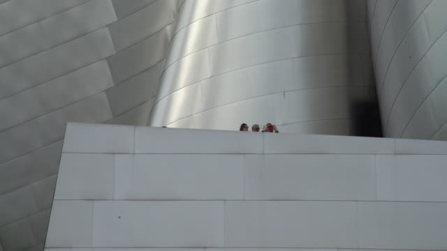 2 women and one guy on disney hall - disney stock videos & royalty-free footage