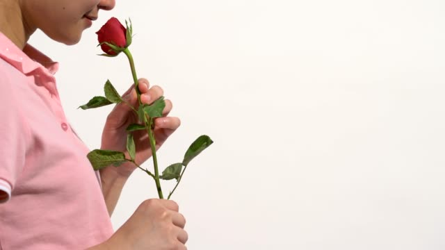women are happy to have red roses, on valentine's day, women wear pink polo shirt on white isolated background. - polo shirt stock videos & royalty-free footage