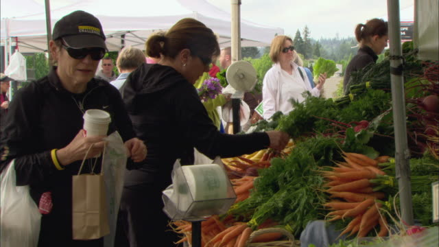 ms women buying carrots at outdoor farmer's market / lake oswego, oregon, usa - plastic bag stock videos and b-roll footage