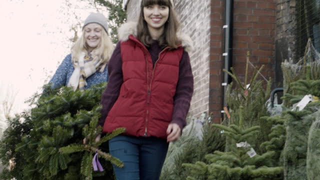 women carrying a christmas tree at christmas market. - down jacket stock videos and b-roll footage