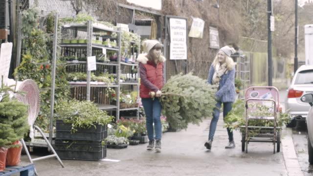 women carrying a christmas tree at urban garden centre. - 収納ラック点の映像素材/bロール