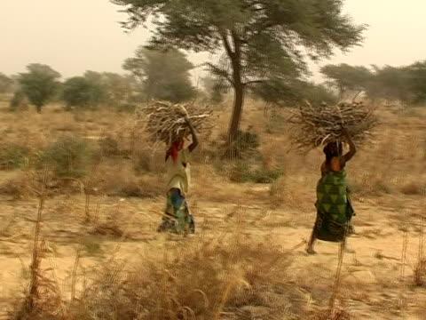 stockvideo's en b-roll-footage met women carrying bales of wood. kenya - fossiele brandstoffen